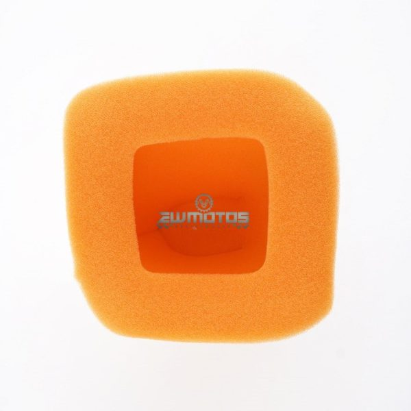 Filtro Ar Twim AIr DTR 125 (1)